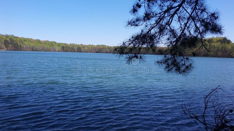 橡木树丛湖公园 免版税库存照片