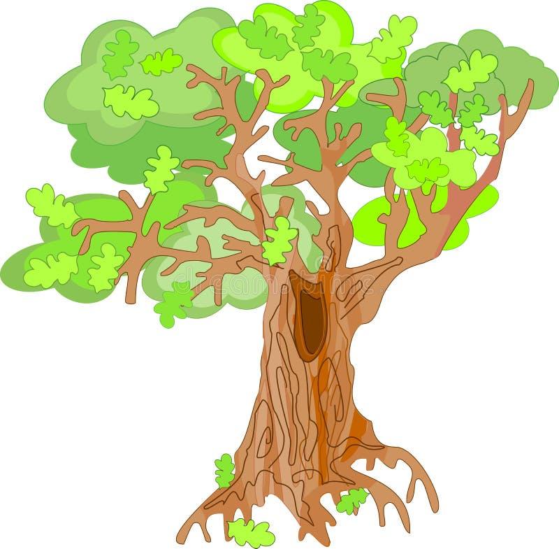 橡木树 皇族释放例证