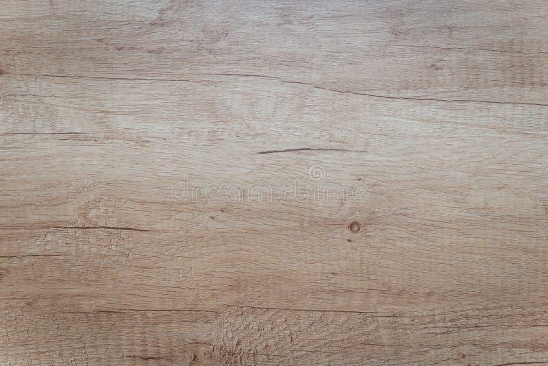橡木的模仿从木头的 向量例证
