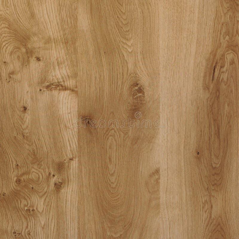橡木纹理 高分辨率 免版税库存图片