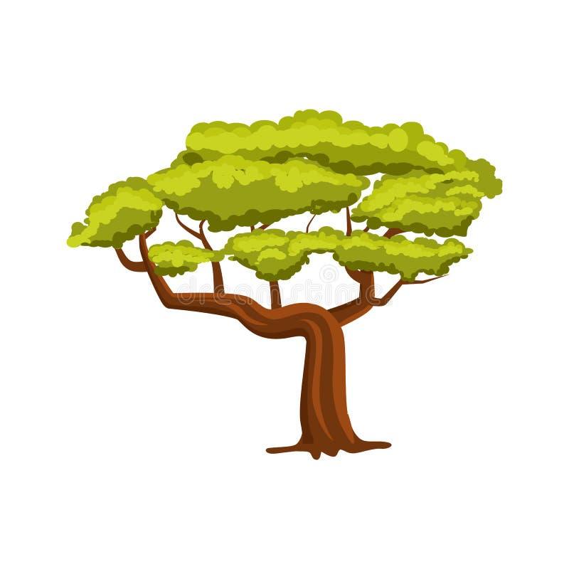 橡木绿色树象 库存例证