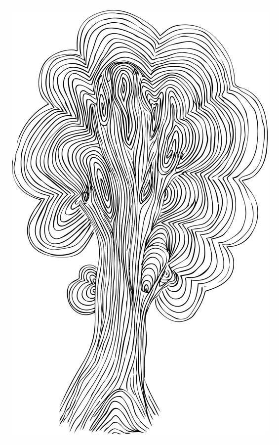 橡木草图结构树向量 皇族释放例证