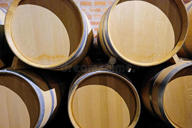 橡木葡萄酒桶在一家马乐白克葡萄酿酒厂工厂的地窖里在圣胡安,阿根廷,南美洲,也看见在门多萨 免版税库存照片