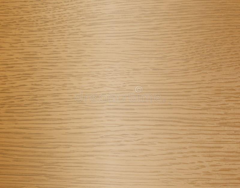 橡木表面  向量例证