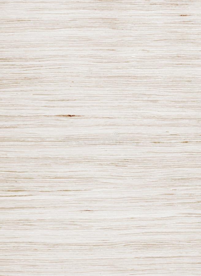 橡木被漂白的纹理 免版税图库摄影