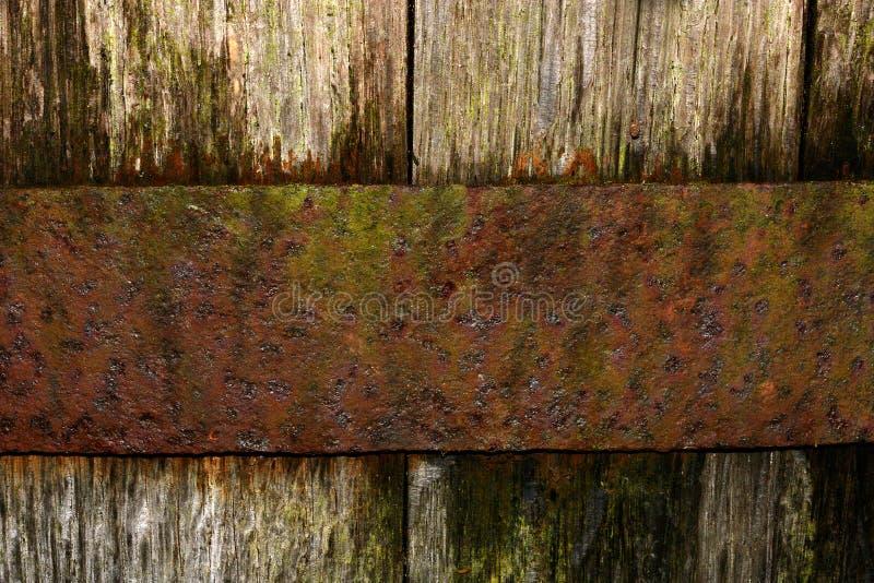 橡木铁锈 库存照片