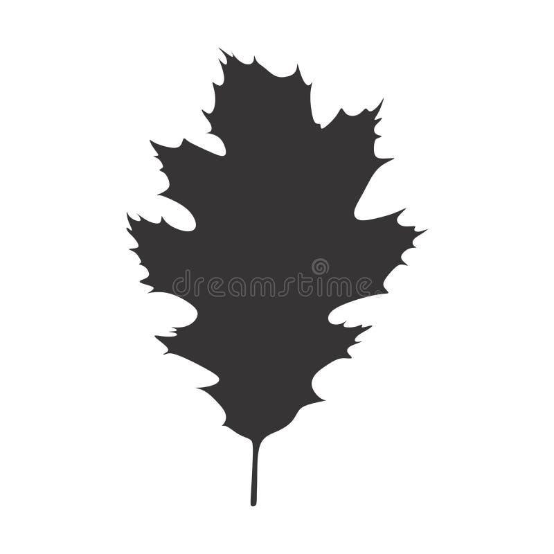 橡木黑白叶子剪影样式 向量例证