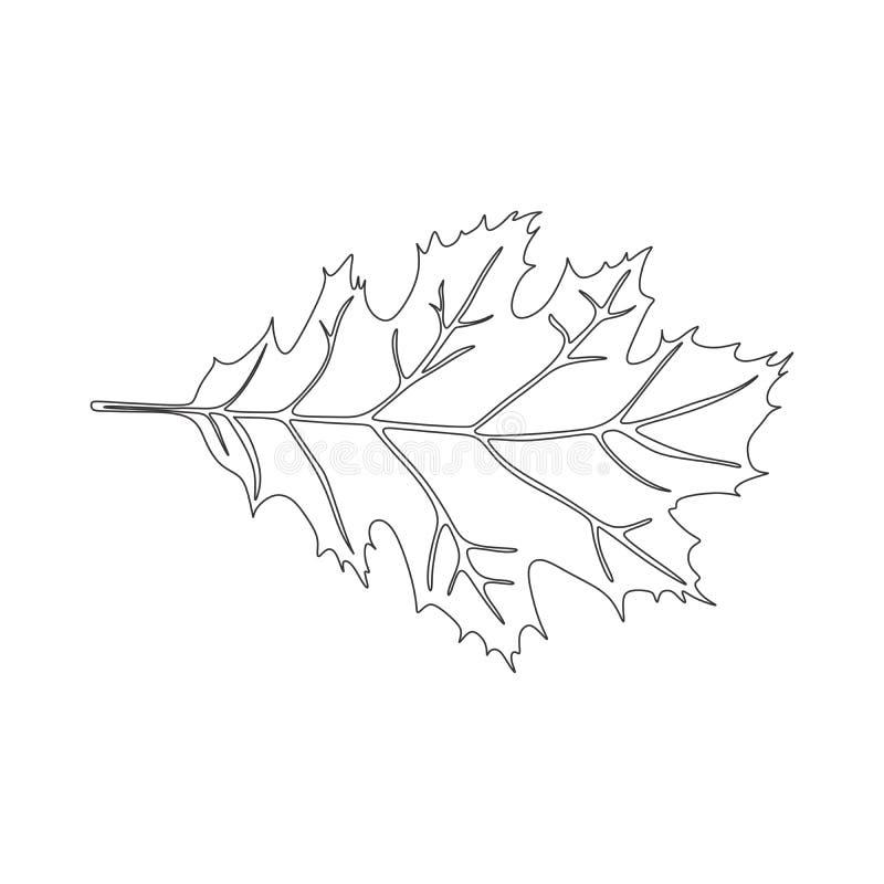橡木黑白叶子剪影象商标 库存例证