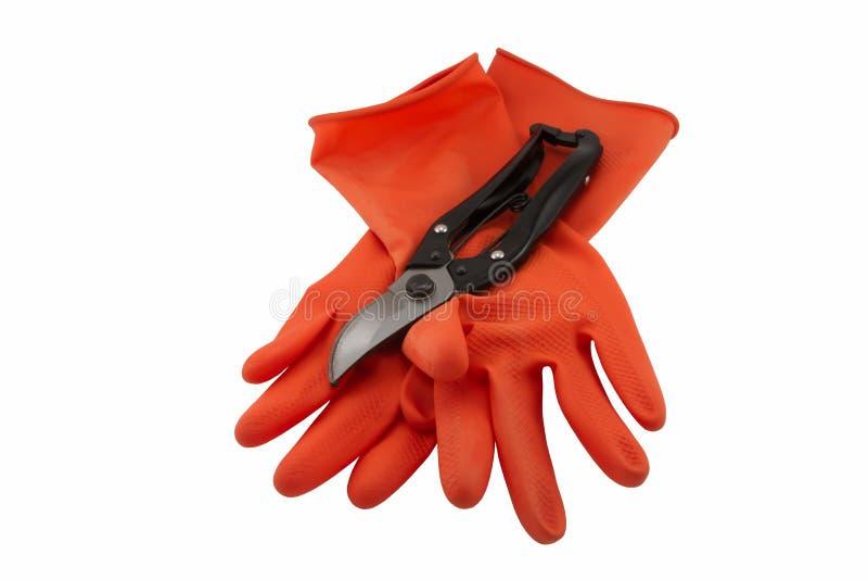 橡胶手套和剪 库存照片
