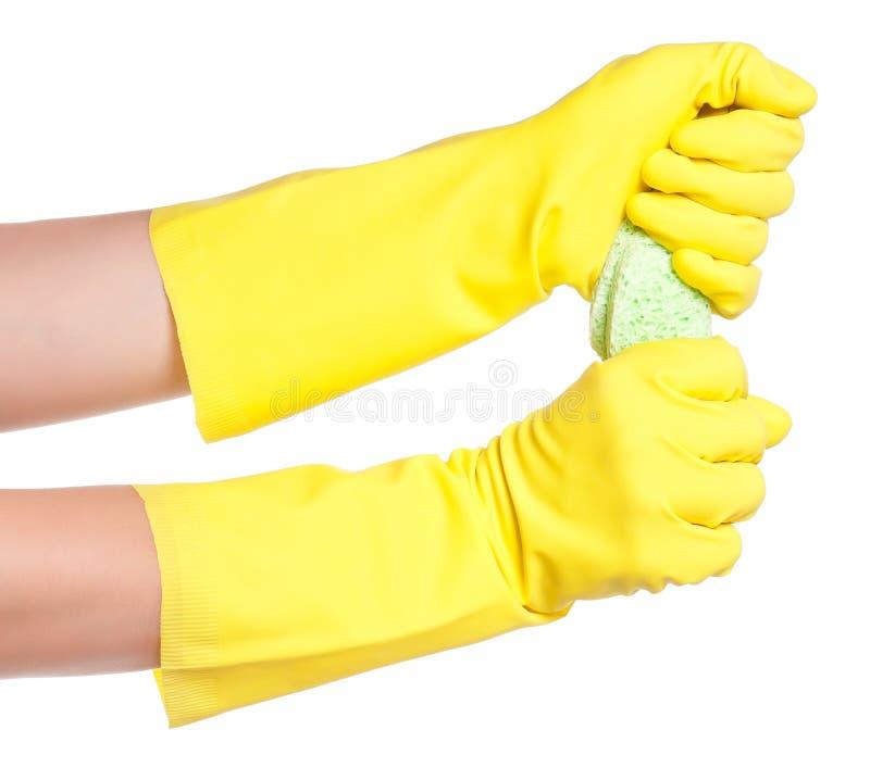 橡胶手套 免版税库存照片