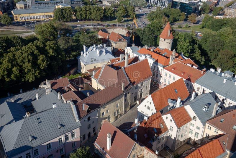 欧洲屋顶老镇在爱沙尼亚 免版税库存照片