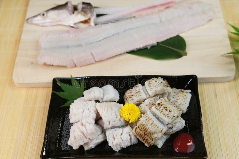 欧洲康吉鳗的矛对待豪华粮食在日本 库存图片