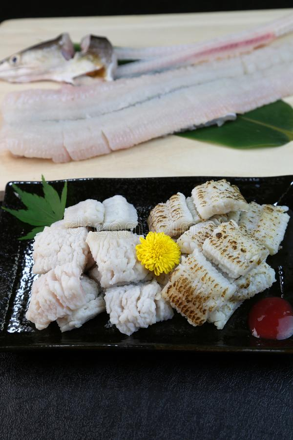 欧洲康吉鳗的矛对待豪华粮食在日本 库存照片