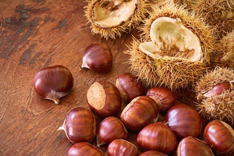 欧洲栗木和果壳在柔光在木桌上 库存照片