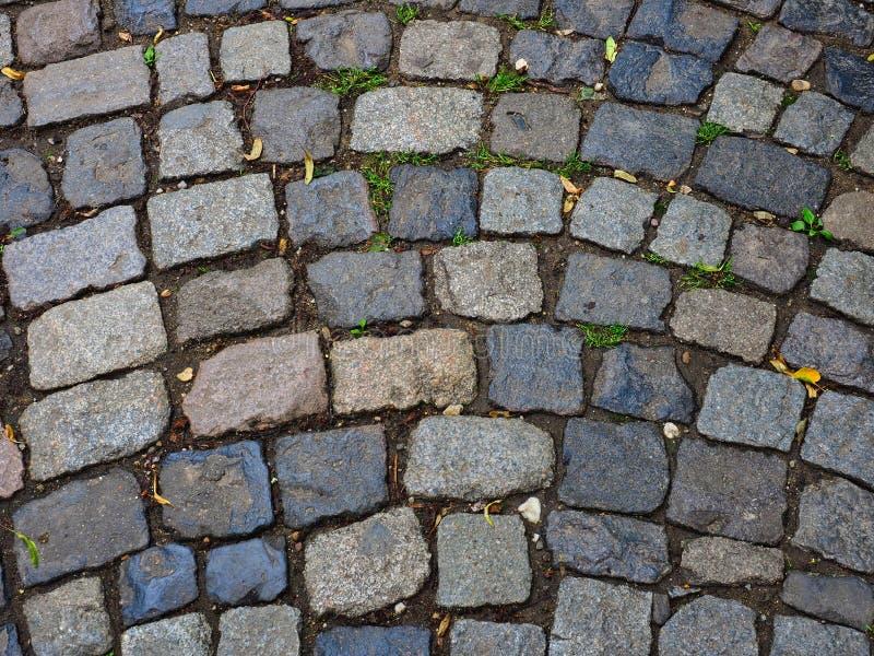 欧洲自然大卵石石头细节  免版税库存照片