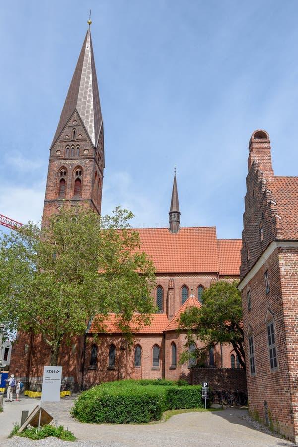 欧登塞大教堂在丹麦 免版税库存照片