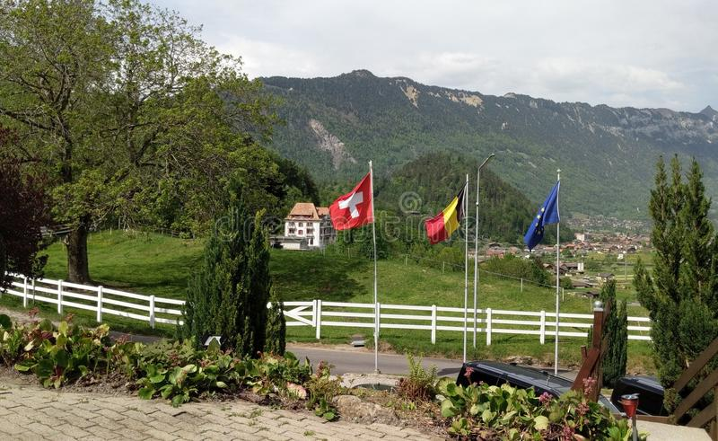欧盟和瑞士旗子欧盟旗子 库存图片