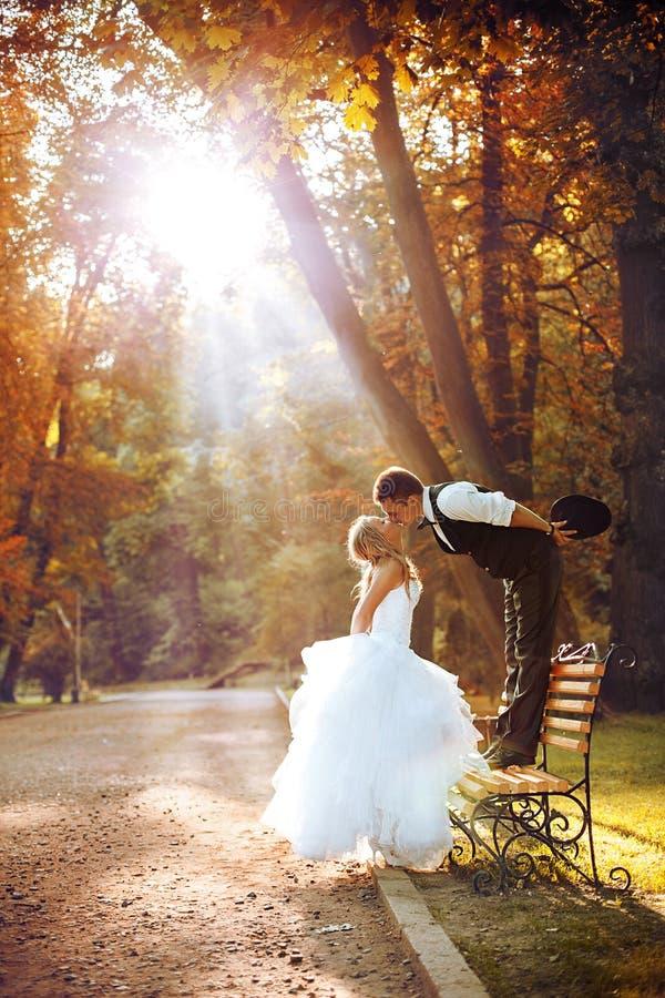 欧洲新娘和新郎 库存图片