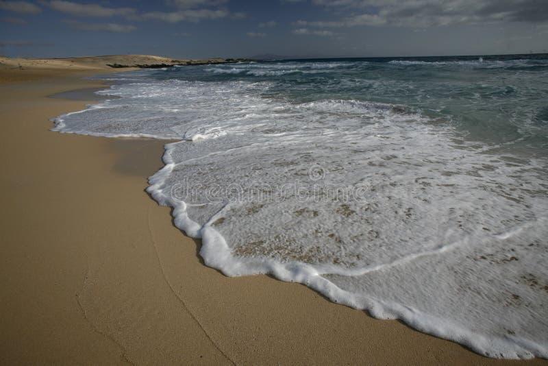 欧洲加那利群岛费埃特文图拉岛 免版税库存图片