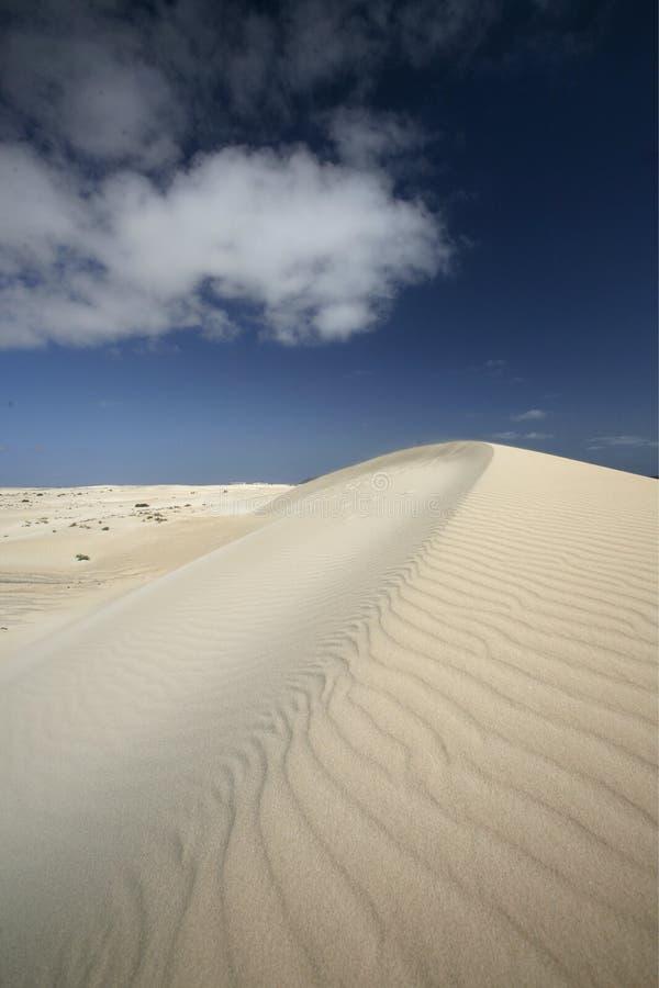 欧洲加那利群岛费埃特文图拉岛 免版税库存照片