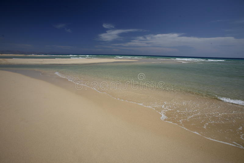 欧洲加那利群岛费埃特文图拉岛 库存图片