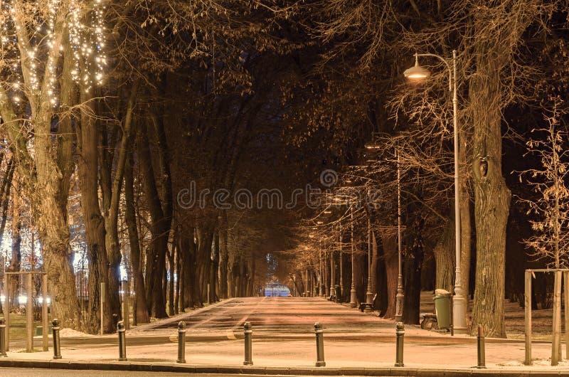 从欧洲城市,夜冬时,布加勒斯特罗马尼亚的胡同 免版税库存照片