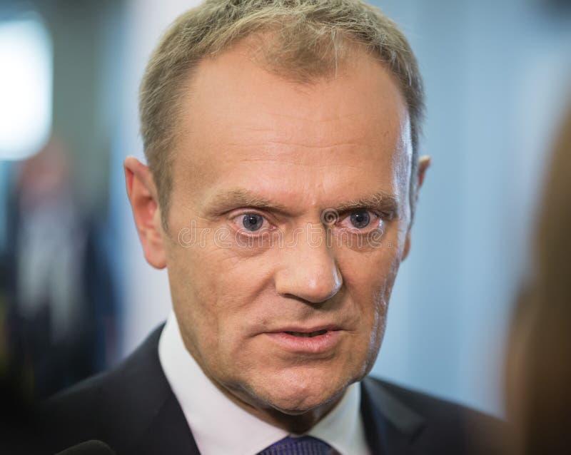 欧洲理事会唐纳德・图斯克的总统 免版税库存照片