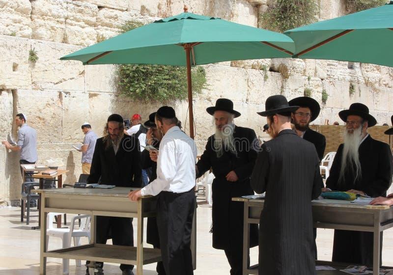 正统犹太人祈祷在西部墙壁在耶路撒冷 库存图片