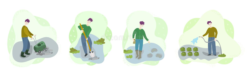 步在领域的有机生长菜 人耕种土壤,开掘孔,母猪种子,浇灌 季节农业收获工作 皇族释放例证
