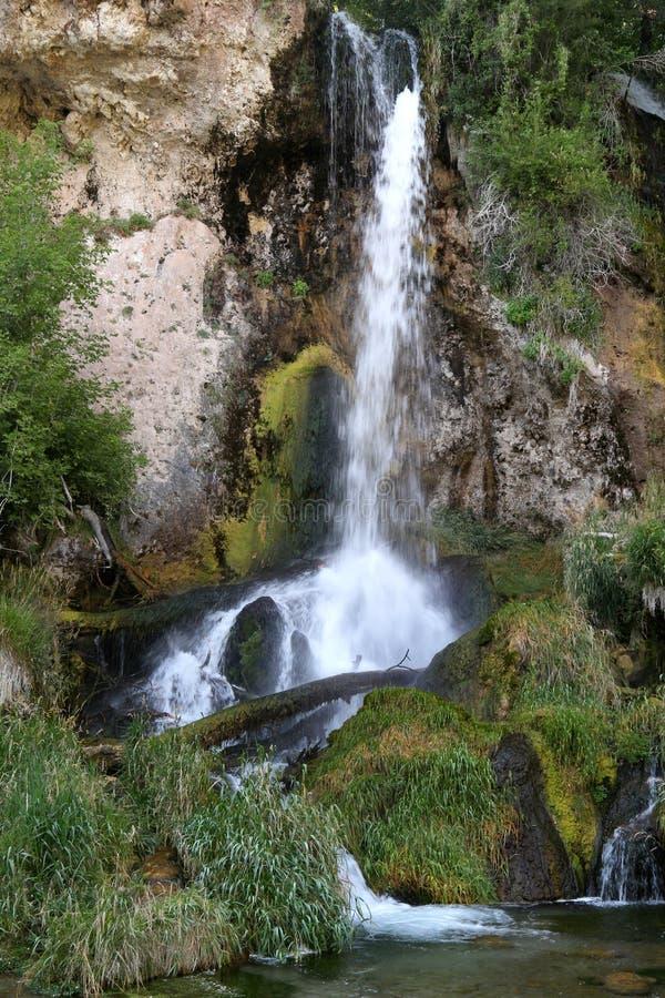 步枪落国家公园,科罗拉多 库存图片
