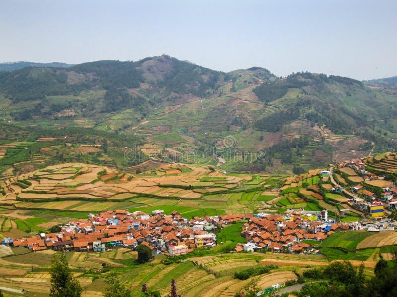 步种田和房子在一个村庄在一个多小山区域,印度 图库摄影