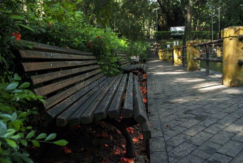 步行在一个附上的公园 库存图片