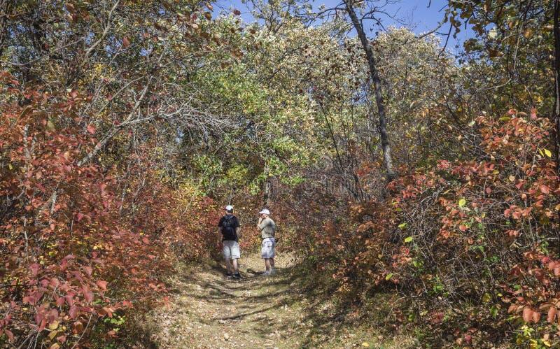 步行在一串足迹的父亲和十几岁的儿子在一温暖的秋天天 库存图片