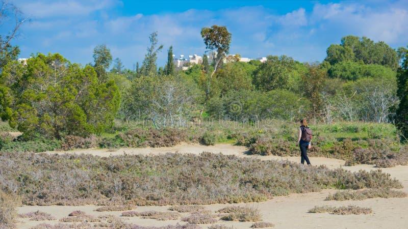 步行在公园的妇女 库存图片