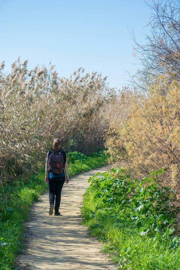 步行在公园,塞浦路斯,欧洲- 1月的妇女 30日2018年 免版税图库摄影