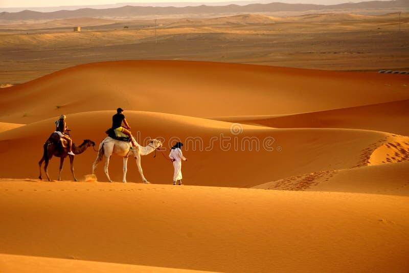 步行在尔格沙漠在摩洛哥 库存照片
