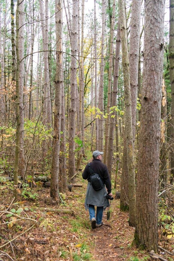 步行在有照相机的森林的人 库存图片