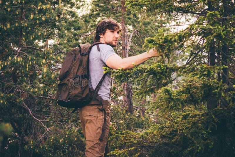 步行在有背包旅行生活方式的森林里的年轻人 免版税库存照片