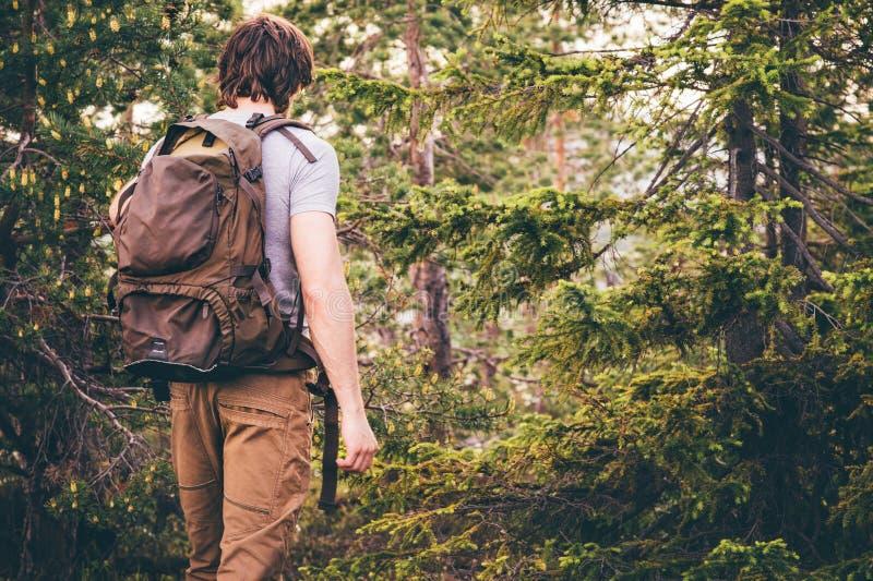 步行在有背包旅行生活方式的森林里的年轻人 免版税库存图片