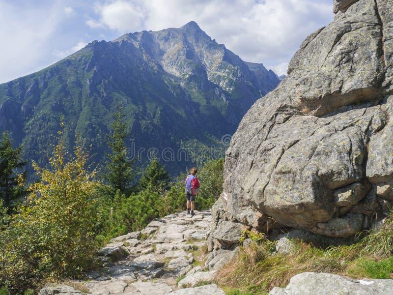 步行在美丽的自然痕迹的资深旅游妇女在高tatra山在斯洛伐克,夏天晴天 免版税库存图片