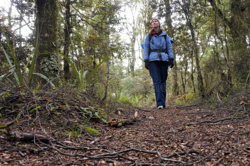 步行在雨林里的妇女远足者 免版税库存照片