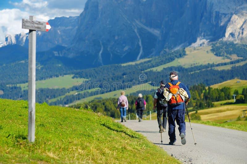 步行在Seiser Alm,最大的高处高山草甸的游人在欧洲,在背景的惊人落矶山脉 库存照片