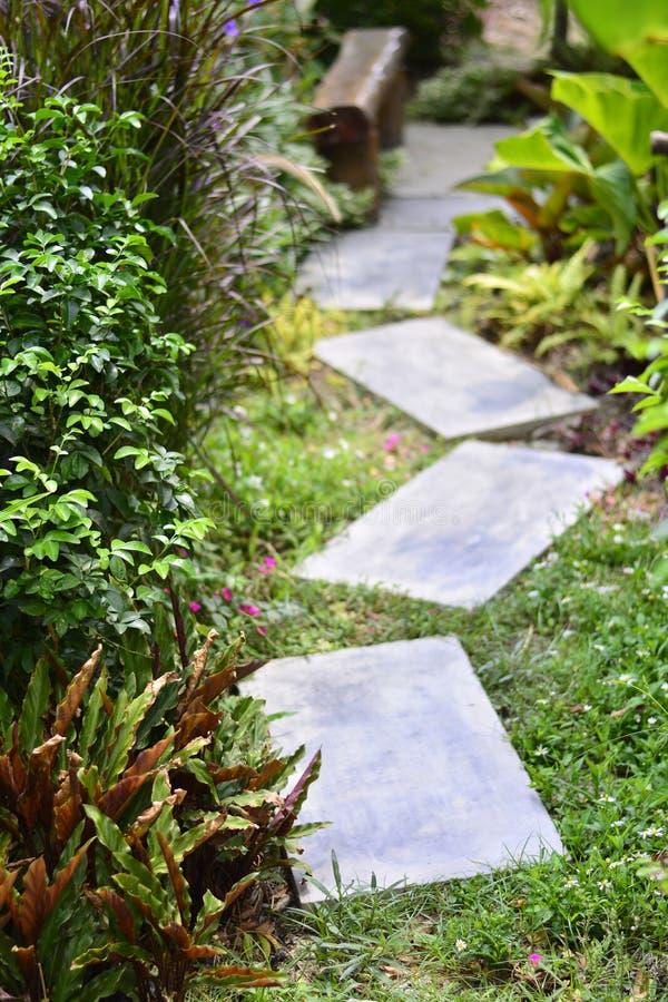 步行方式在有花的绿色庭院里 库存图片