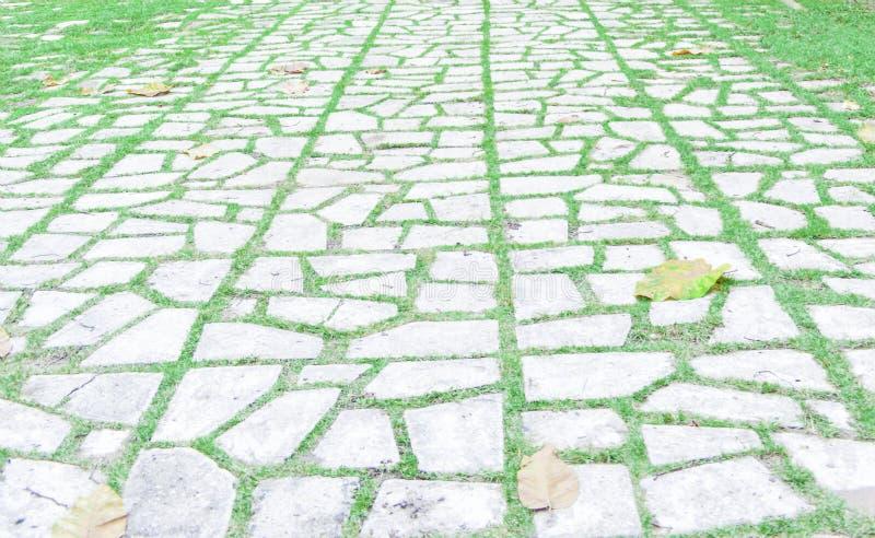 步行有任意的草的方式道路 免版税库存图片