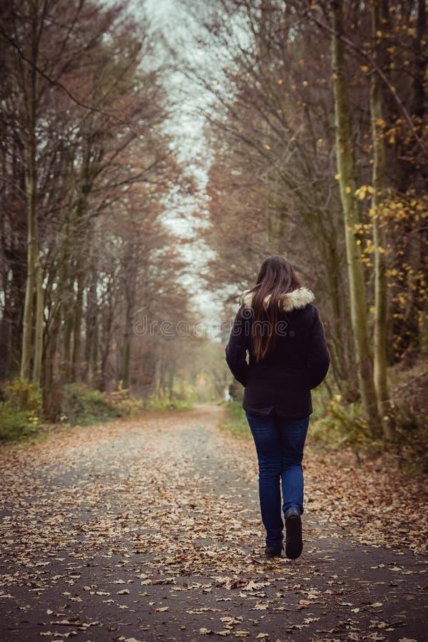 步行沿着向下在秋天的一条道路的孤独的女孩 库存照片
