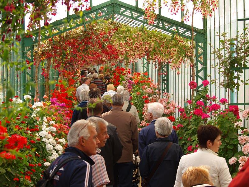 步行沿着向下皇家温室走廊在布鲁塞尔 免版税库存图片