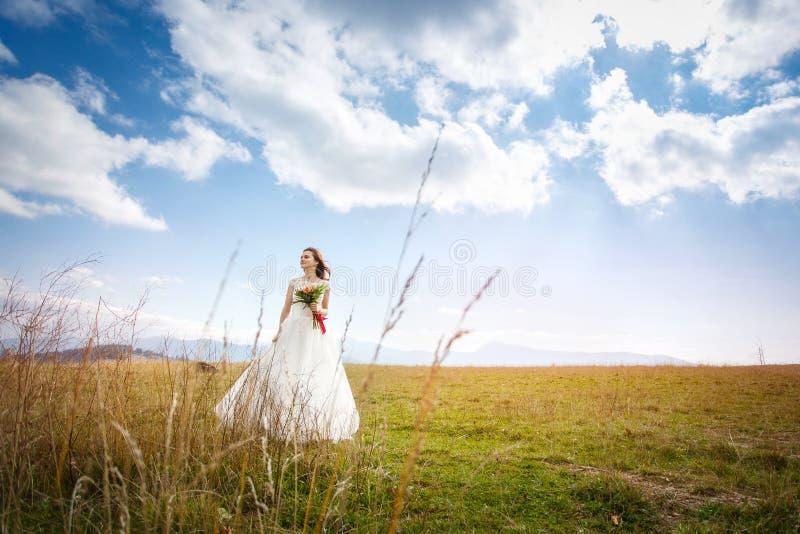 步行的美丽的新娘 库存照片
