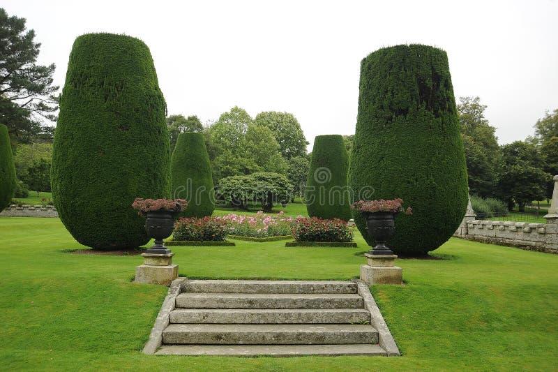 步骤在环境美化的庭院里 库存照片