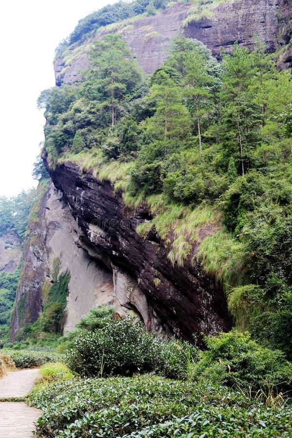 武夷山, danxia地貌学风景在中国 库存照片