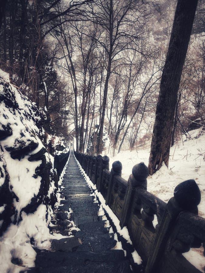 武当山古老路在冬天中国 免版税库存图片